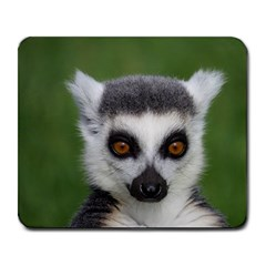 Ring Tailed Lemur Large Mouse Pad (Rectangle)