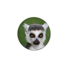 Ring Tailed Lemur Golf Ball Marker 4 Pack