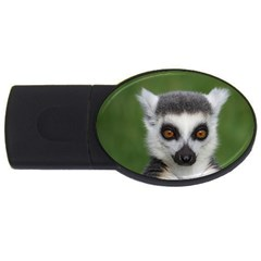 Ring Tailed Lemur 2gb Usb Flash Drive (oval)