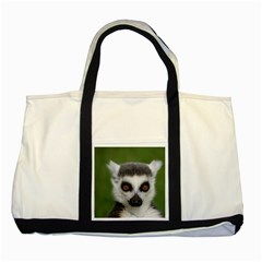 Ring Tailed Lemur Two Toned Tote Bag