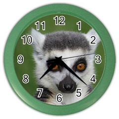 Ring Tailed Lemur Wall Clock (color)
