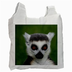 Ring Tailed Lemur Recycle Bag (Two Sides)
