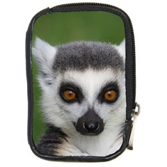 Ring Tailed Lemur Compact Camera Leather Case