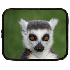 Ring Tailed Lemur Netbook Case (XXL)