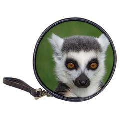 Ring Tailed Lemur Cd Wallet
