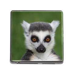 Ring Tailed Lemur Memory Card Reader with Storage (Square)