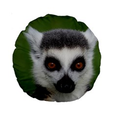 Ring Tailed Lemur 15  Premium Round Cushion