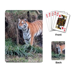 Tiger Playing Cards Single Design