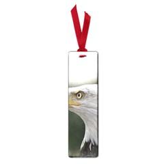 Bald Eagle (1) Small Bookmark