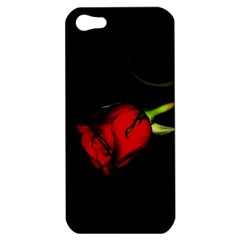 L270 Apple Iphone 5 Hardshell Case