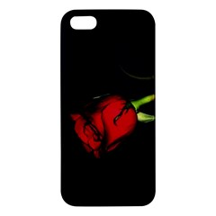L270 iPhone 5 Premium Hardshell Case