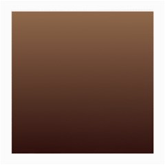 Chamoisee To Seal Brown Gradient Glasses Cloth (medium, Two Sided)