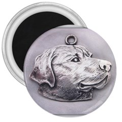 Labrador 3  Button Magnet