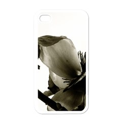 Magnolia Apple Iphone 4 Case (white)