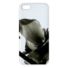Magnolia Iphone 5 Premium Hardshell Case
