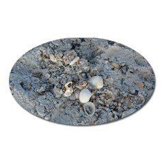 Sea Shells On The Shore Magnet (oval)