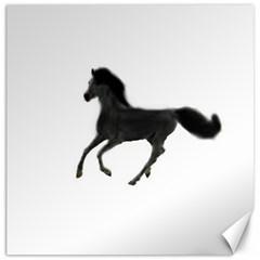 Running Horse Canvas 12  x 12  (Unframed)