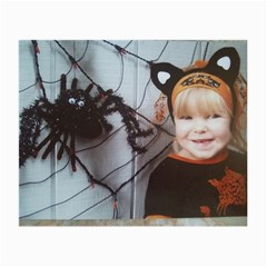Spider Baby Glasses Cloth (small)