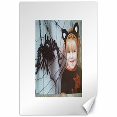 Spider Baby Canvas 12  x 18  (Unframed)