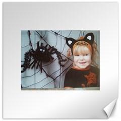 Spider Baby Canvas 16  X 16  (unframed)