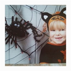 Spider Baby Glasses Cloth (medium, Two Sided)