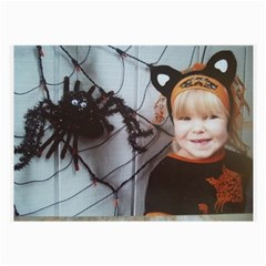 Spider Baby Glasses Cloth (large, Two Sided)