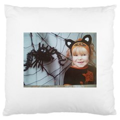 Spider Baby Large Cushion Case (one Side)