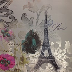 Floral Vintage Paris Eiffel Tower Art Canvas 20  X 20  (unframed)