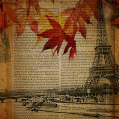 Elegant Fall Autumn Leaves Vintage Paris Eiffel Tower Landscape Canvas 16  X 16  (unframed)