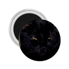 I Am Watching You! 2 25  Button Magnet