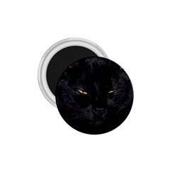 I am watching you! 1.75  Button Magnet