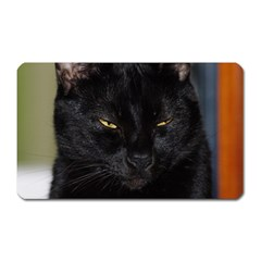 I Am Watching You! Magnet (rectangular)