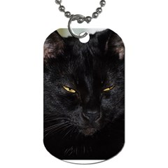 I am watching you! Dog Tag (One Sided)