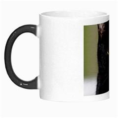 I am watching you! Morph Mug