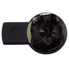 I am watching you! 4GB USB Flash Drive (Round)