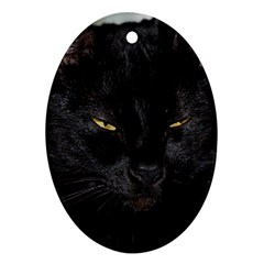 I am watching you! Oval Ornament (Two Sides)