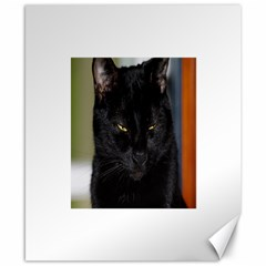 I am watching you! Canvas 8  x 10  (Unframed)