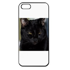 I am watching you! Apple iPhone 5 Seamless Case (Black)