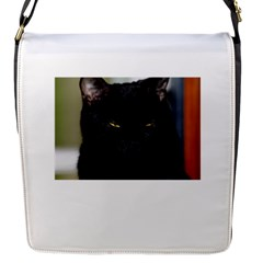 I am watching you! Flap closure messenger bag (Small)