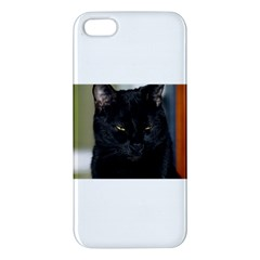 I am watching you! iPhone 5S Premium Hardshell Case