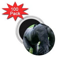 Gorilla Dad 1 75  Button Magnet (100 Pack)