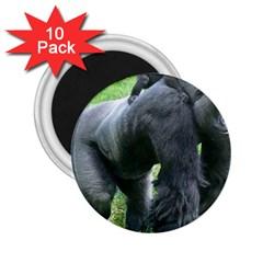 Gorilla Dad 2 25  Button Magnet (10 Pack)