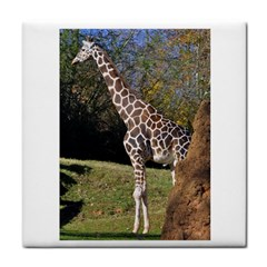 giraffe Ceramic Tile