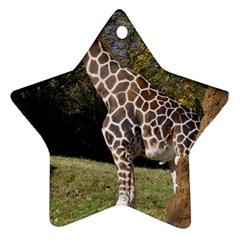 giraffe Star Ornament