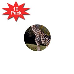 giraffe 1  Mini Button (10 pack)