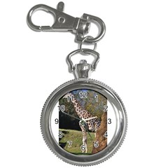 giraffe Key Chain & Watch