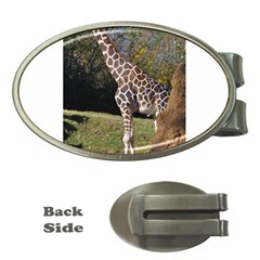 giraffe Money Clip (Oval)