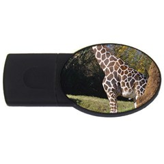 giraffe 2GB USB Flash Drive (Oval)