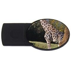 giraffe 4GB USB Flash Drive (Oval)