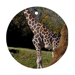 giraffe Round Ornament (Two Sides)
